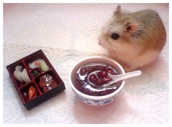 Gourmand_Hamster_by_hedspace77.jpg