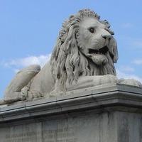 Mit jelent a LION?