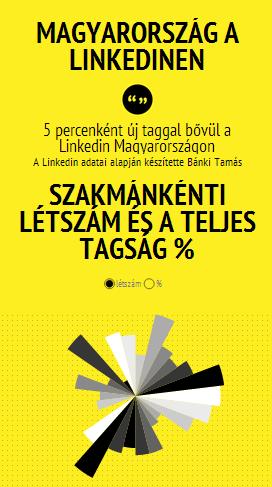 magyarok-a-linkedinen-2013-7.png