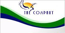 the_company_logo.jpg