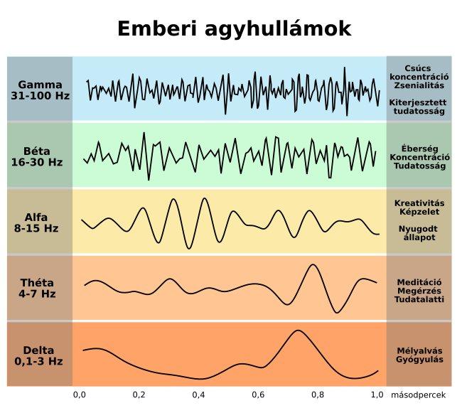 agyhullamok-frekvencia.jpg
