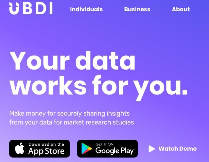 ubdi-logo-webpage.jpg