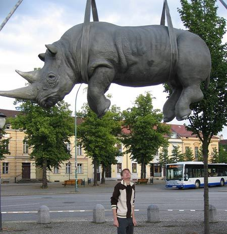 sculpture_Hanging-Rhino.jpg