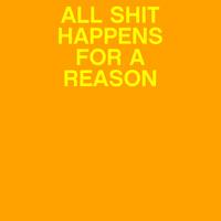 Shit Reason