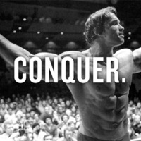 Daily Arnold