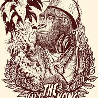 Daily Kong