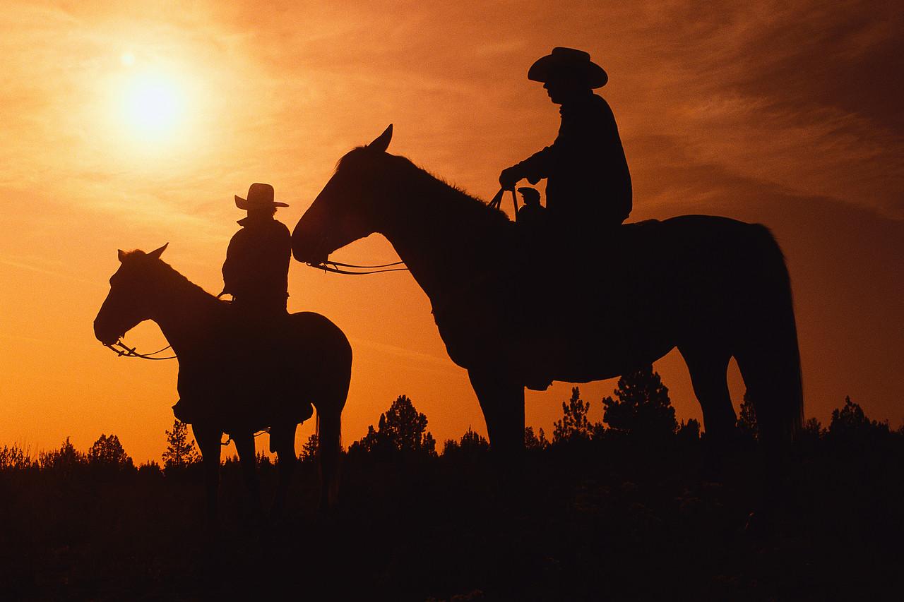 western50F.jpg
