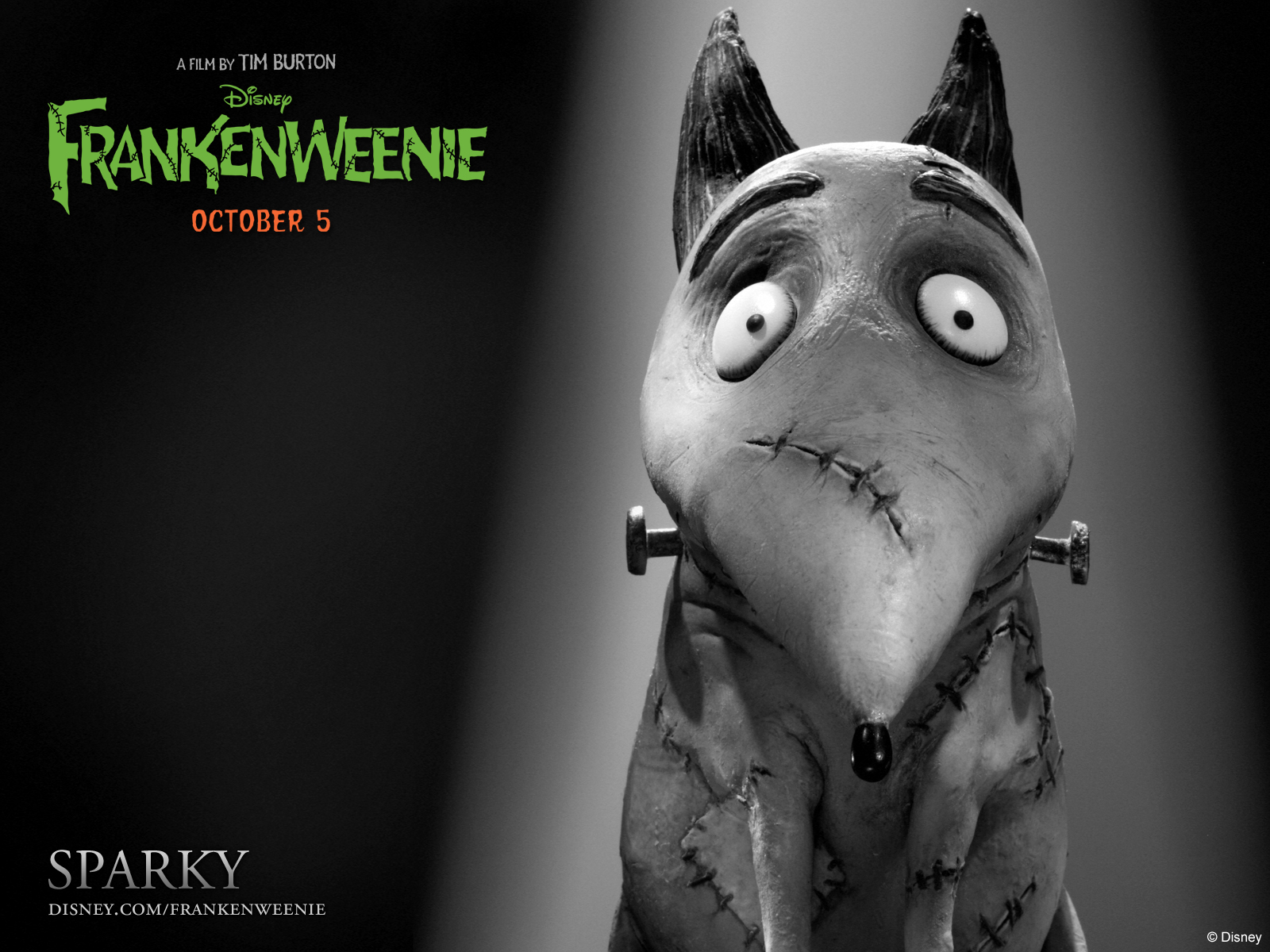 Frankenweenie_Exclusive_Character_Debuts_Meet_Victor_And_Sparky_1340122165.jpg