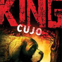 Stephen King: Cujo (1981)