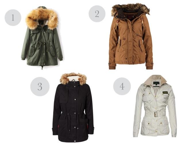 fashioncoat2.jpg
