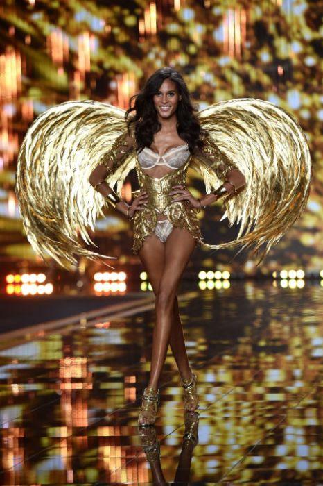 Csodálatos szárnya van, nem igaz? / Wonderful wings..
