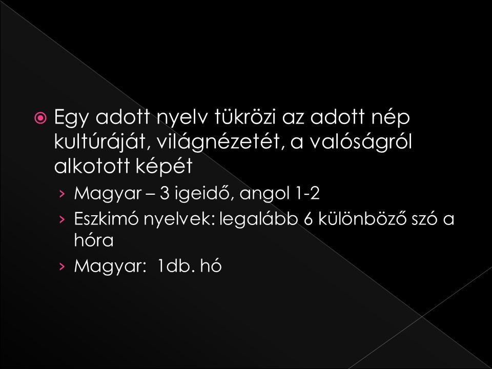dia14_14.JPG
