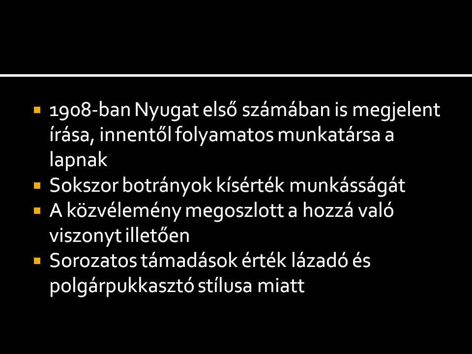 dia6_9.JPG