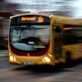 Tízszeres növekedés a buszpiacon