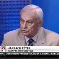Vita a kormány Országvédelmi Akciótervéről - Schiffer András