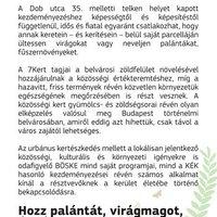 7kert - Urbánus kertészkedés közösségépítéssel
