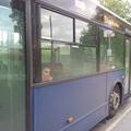 Akadálymentes közlekedés a Mediterrán-lakóparkban és a Gubacsi lakótelepen