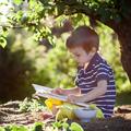 Miért van a gyereknek beszédészlelési elmaradása?