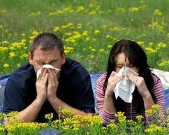 allergia_emberek_szerk.jpg