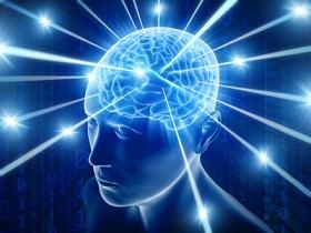 fej agy méretezve.jpg