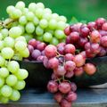 Pro és kontra: Együnk vagy ne együnk szőlőt?