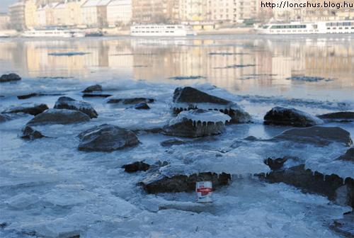 Löncshus a Duna jegén