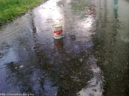 Löncs az esőben