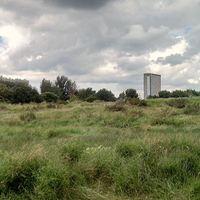 Vissza a természetbe a Mudchute city farmon