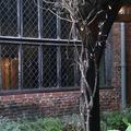 Hihetetetlen ház Hackneyben
