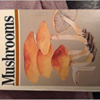 ^BEST^ A Field Guide To Mushrooms North America (Peterson Field Guides). PACKARD espacio Least siendo Letras