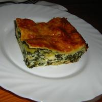 VKF 33. Vol I.: Medvehagymás lasagne