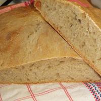 Fehér kenyér /Francine/