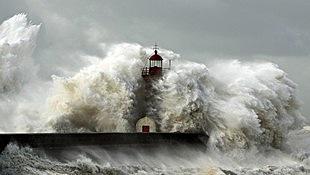 cunami 1.jpg