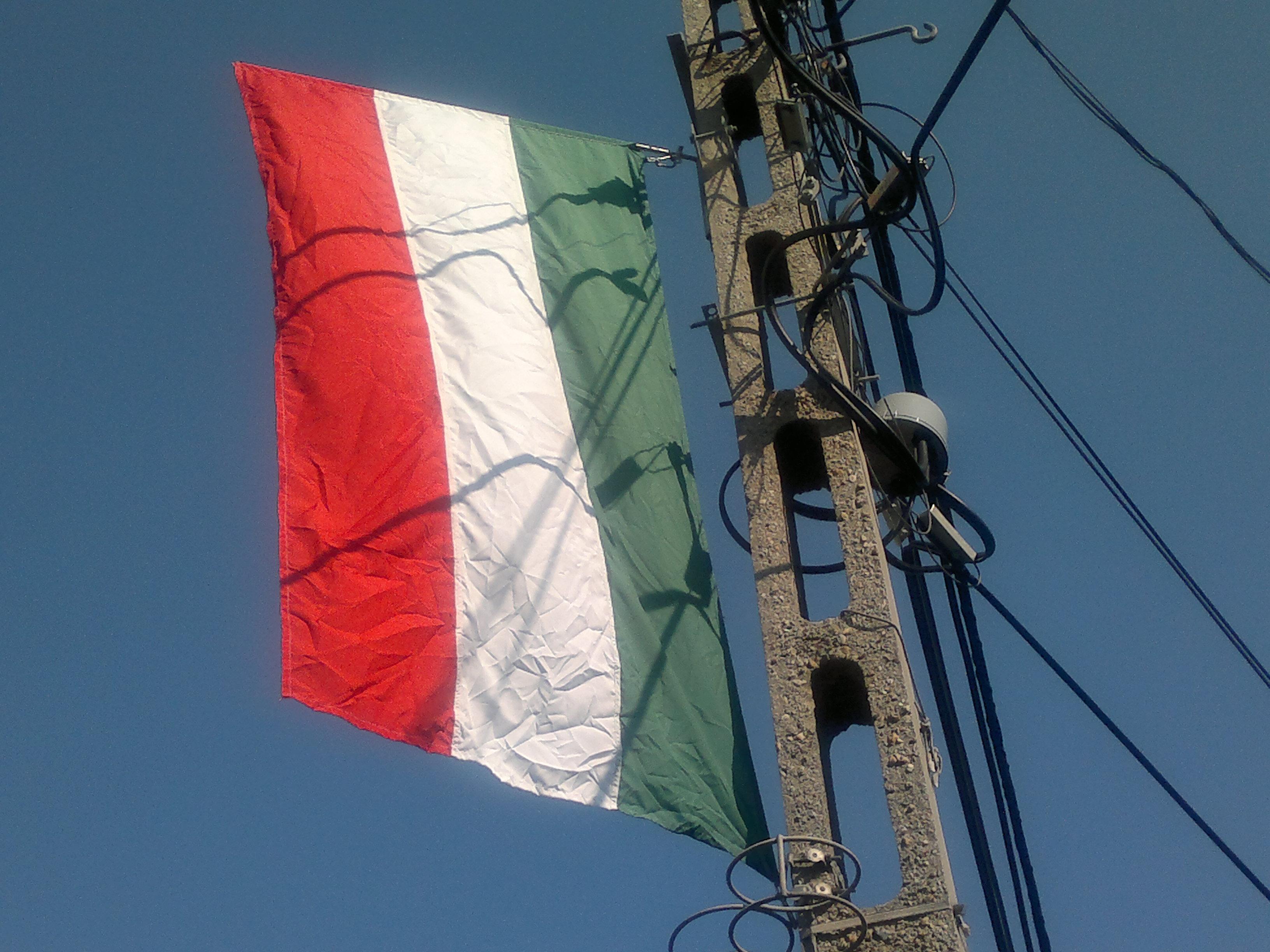 gyűrött zászló.jpg