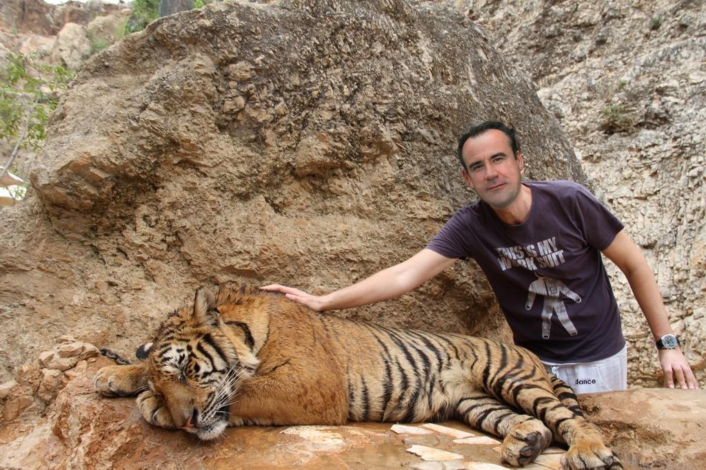 tigris_simogatas.jpg