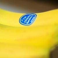 Banánköztársaság
