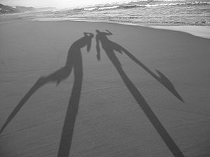 árnyék szabadfelhasználású kép a wikipédiából Shadows-in-the-sand.jpg