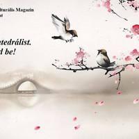 Cseresznyevirág (haiku)
