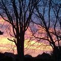 Napfelkelte a kertünkben