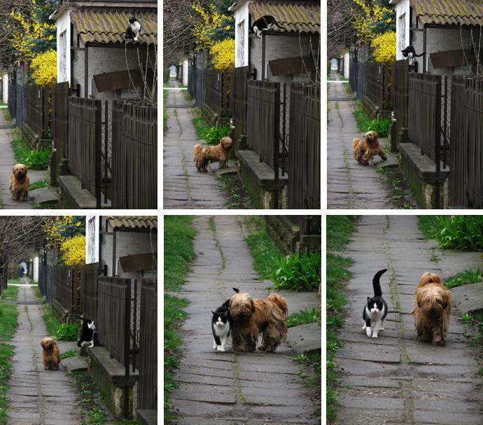 barátok2.jpg