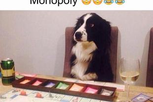 Nesze neked, Monopoly csalórobot!