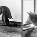 Gondolunk Beuysra, és Beuys gondol ránk – múzeumi reenactment, 2021