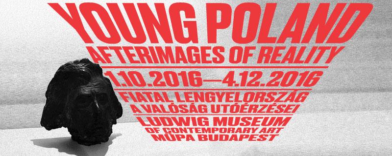 A Ludwig Múzeum bemutatja: Egy kiállítás képe