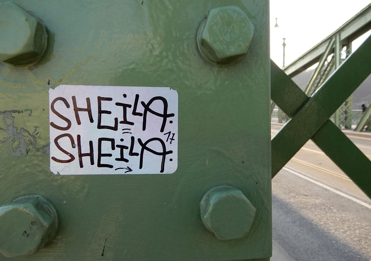 Sheila | fotó: Boros Géza