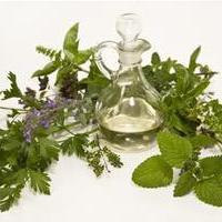 Szúnyogriasztó szárított gyógynövényekből