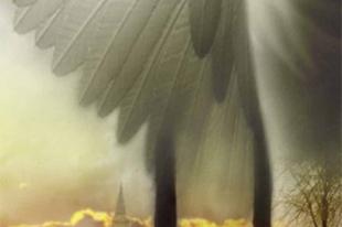 Jessica Gregson: Angyalcsinálók