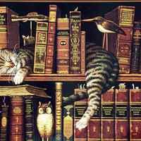 Bölcsődei könyvállomány I.