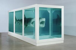 A fiatal brit művészektől a formaldehidbe fagyott cápáig
