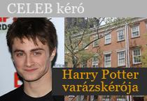 Harry Potter varázskérója
