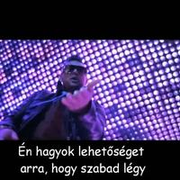 Sean Paul ft Alexis Jordan - Got 2 Luv U